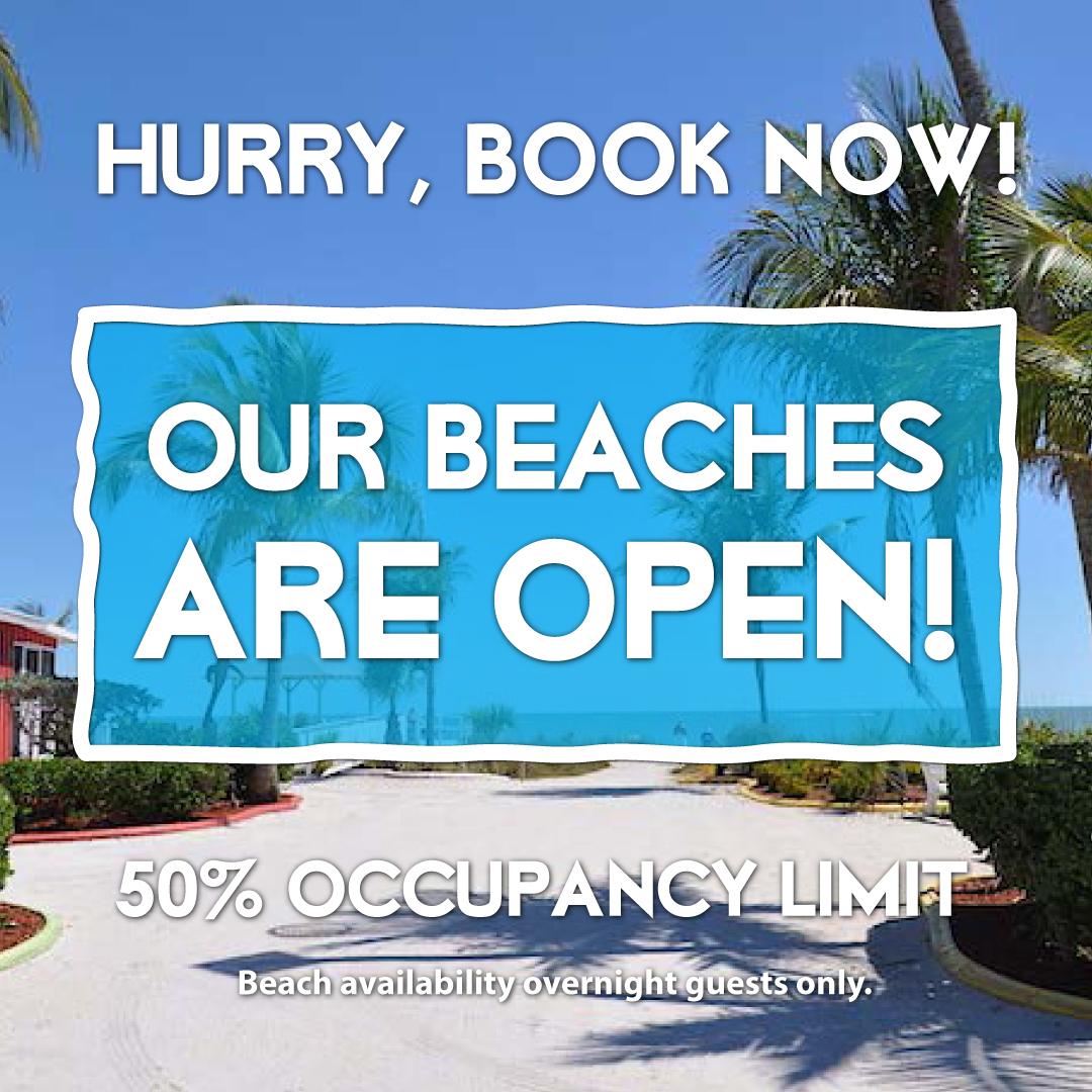 beachview cottages open